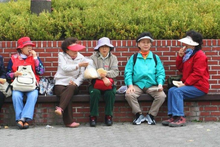 ajummas korea digitale nomaden